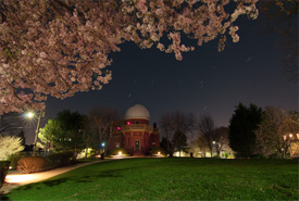 Cherry Blossoms and Star Trails at Ladd Observatory