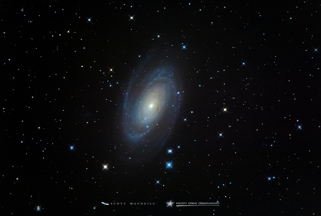Bode's Galaxy: Our Galactic Neighbor